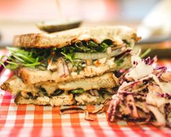 grilled chicken sandwich with mixed greens and slaw